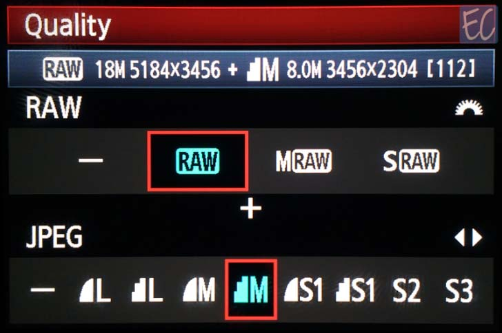 RAW + JPEGs file format