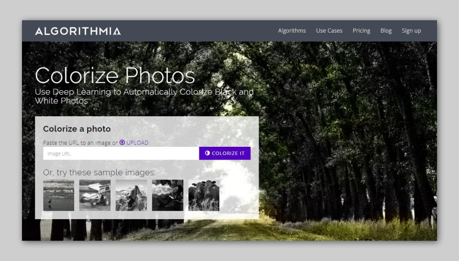 Algorithmia Colorize Black And White Photos