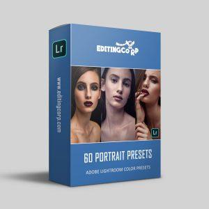 60 portrait presets product image