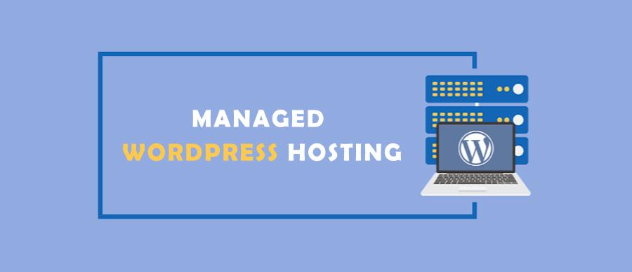Liquid Web Managed WordPress Hosting