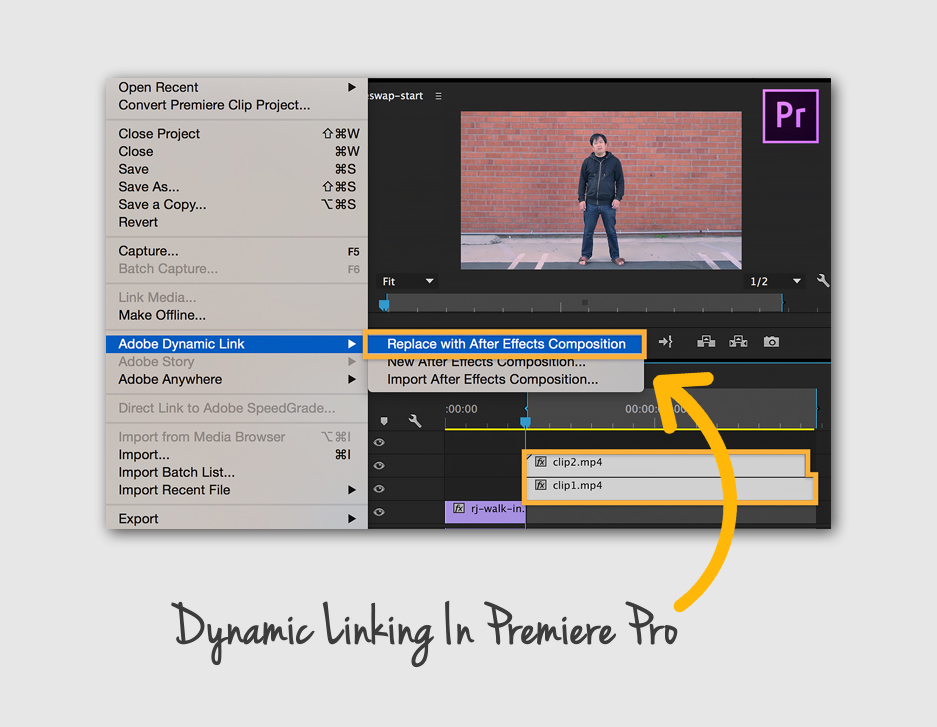 Dynamic Linking Adobe