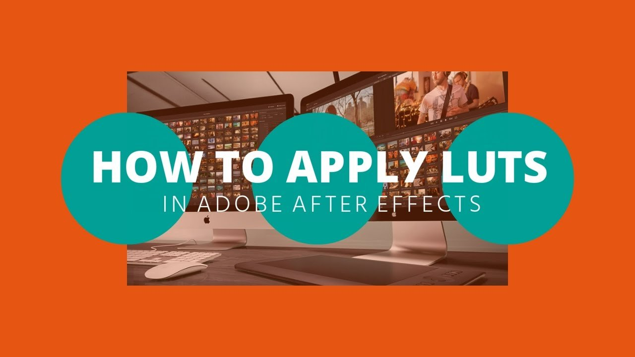 how to professionally learn adobe premiere and after effects reddit