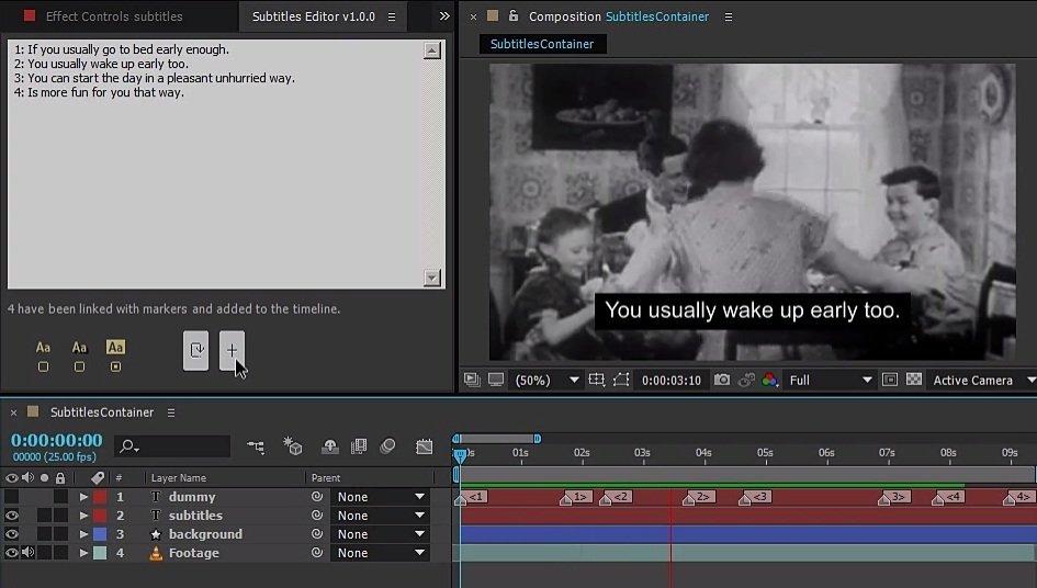 step 3 - Subtitles Editor