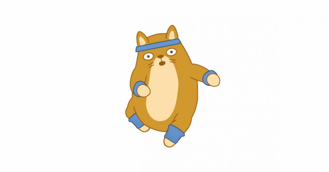teodor the cat