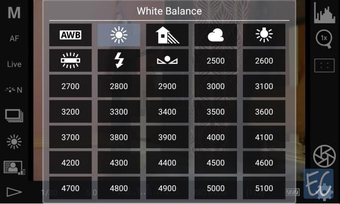 Set your DSLR White Balance Properly